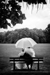 séance photo couple après le mariage